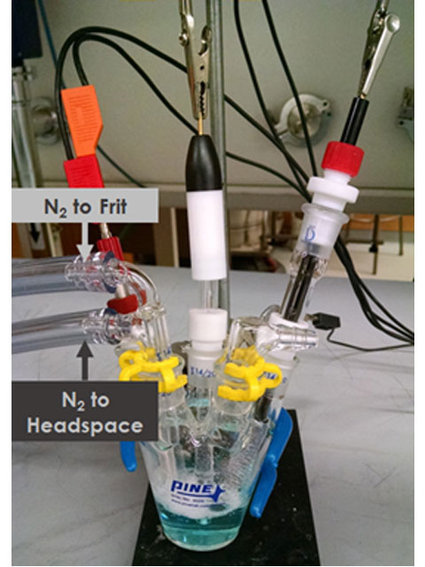 Purging the Electrochemical Cell