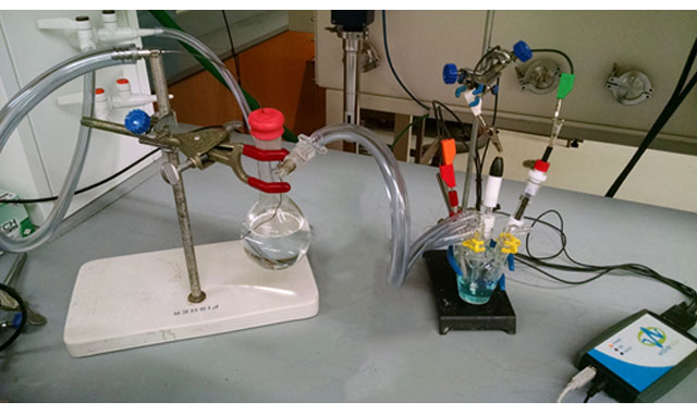 Concentration Sensitive Electrochemical Cell Setup